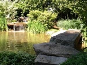 Pond-Rennovation-Hollis-300x225